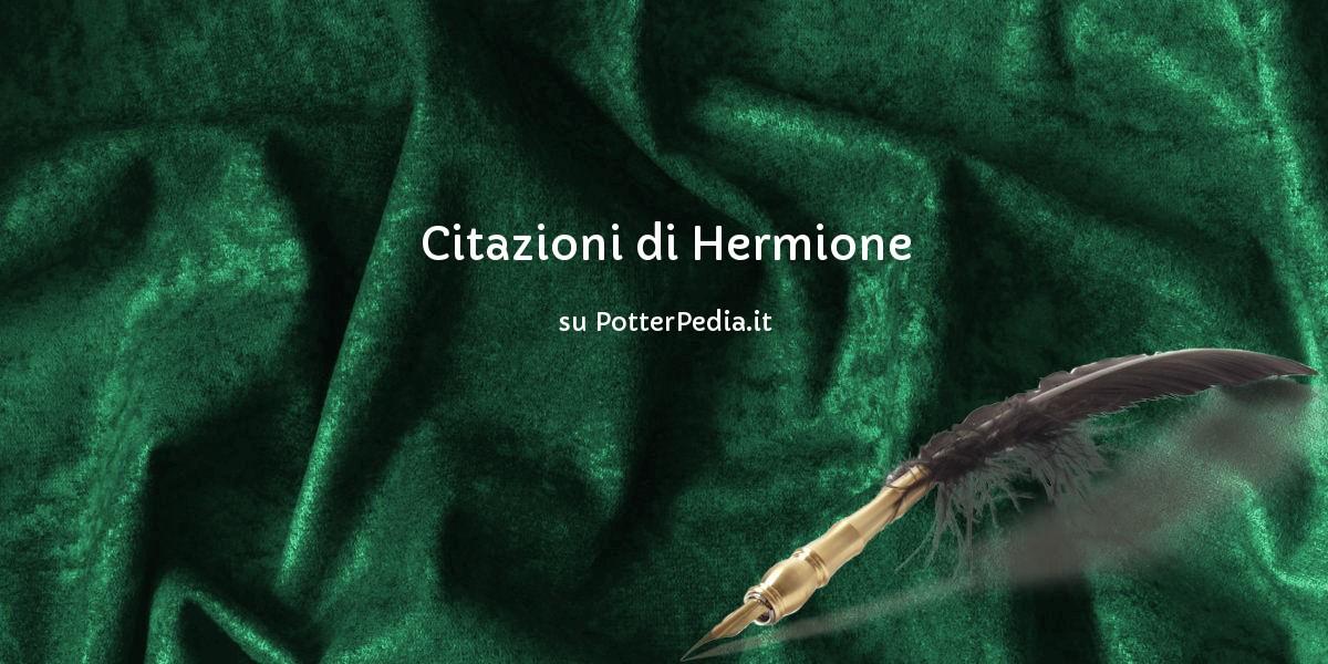 Harry Potter Hermione Granger Brillante Costume E mai indossato Nuovo di zecca