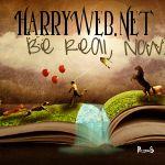 Stefano Draems Harry Potter - PotterPedia.it