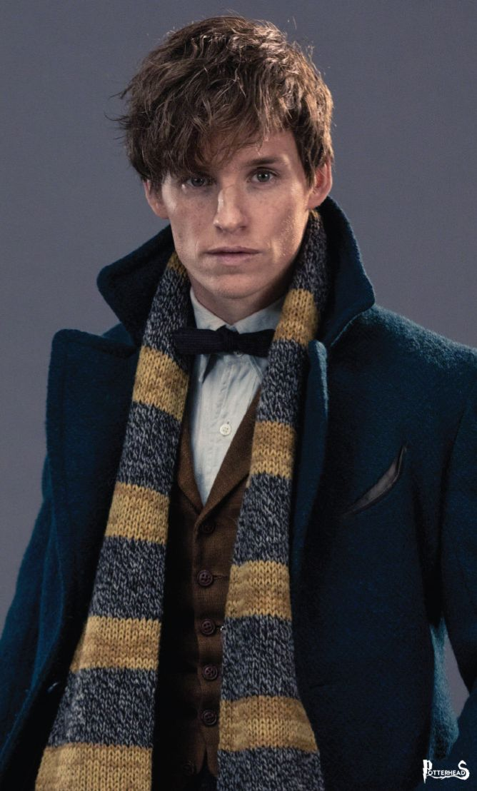 Newt Scamander Harry Potter - PotterPedia.it