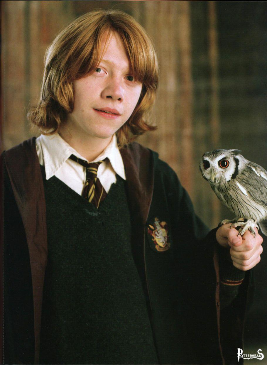 Leotordo Harry Potter - PotterPedia.it