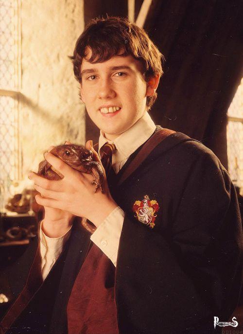 Oscar Harry Potter - PotterPedia.it