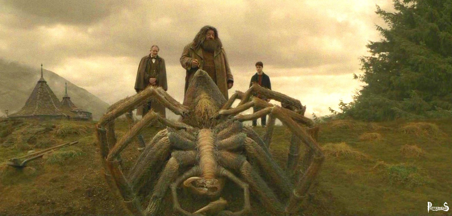 Aragog Harry Potter - PotterPedia.it