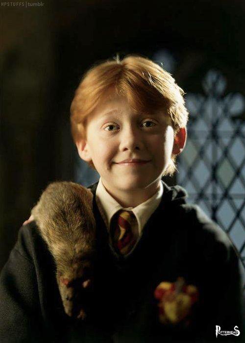 Crosta Harry Potter - PotterPedia.it
