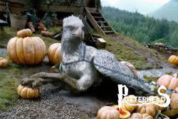 Fierobecco Harry Potter - PotterPedia.it