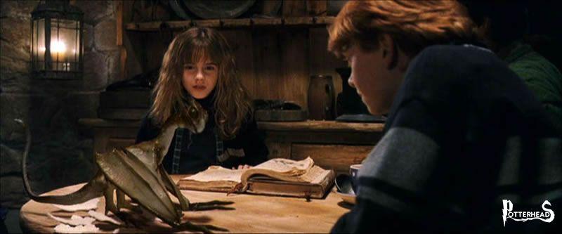 Norberto Harry Potter - PotterPedia.it