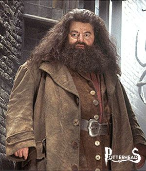 Rubeus Hagrid Harry Potter - PotterPedia.it