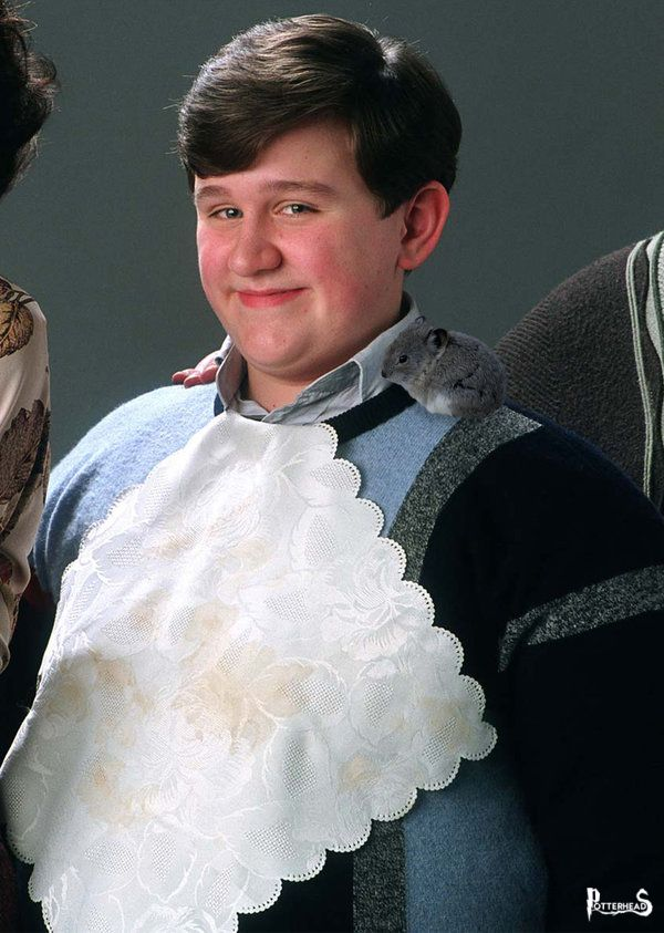Dudley Dursley Harry Potter - PotterPedia.it