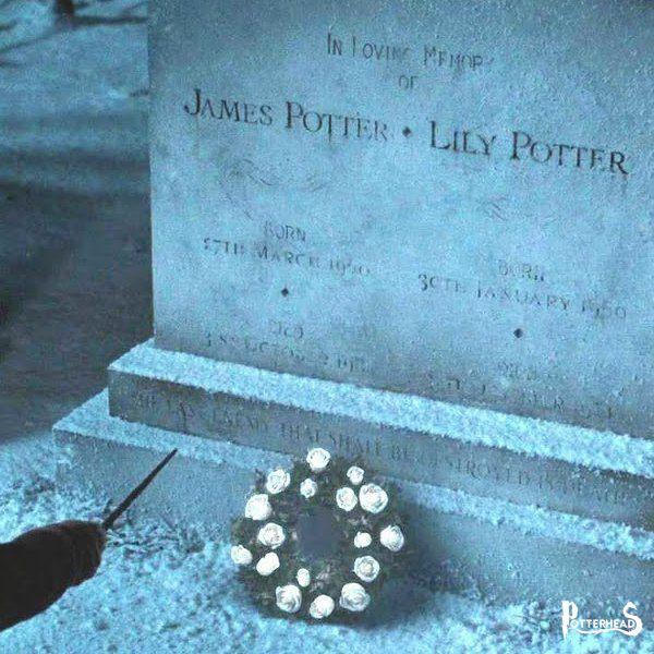 Famiglia Potter Harry Potter - PotterPedia.it