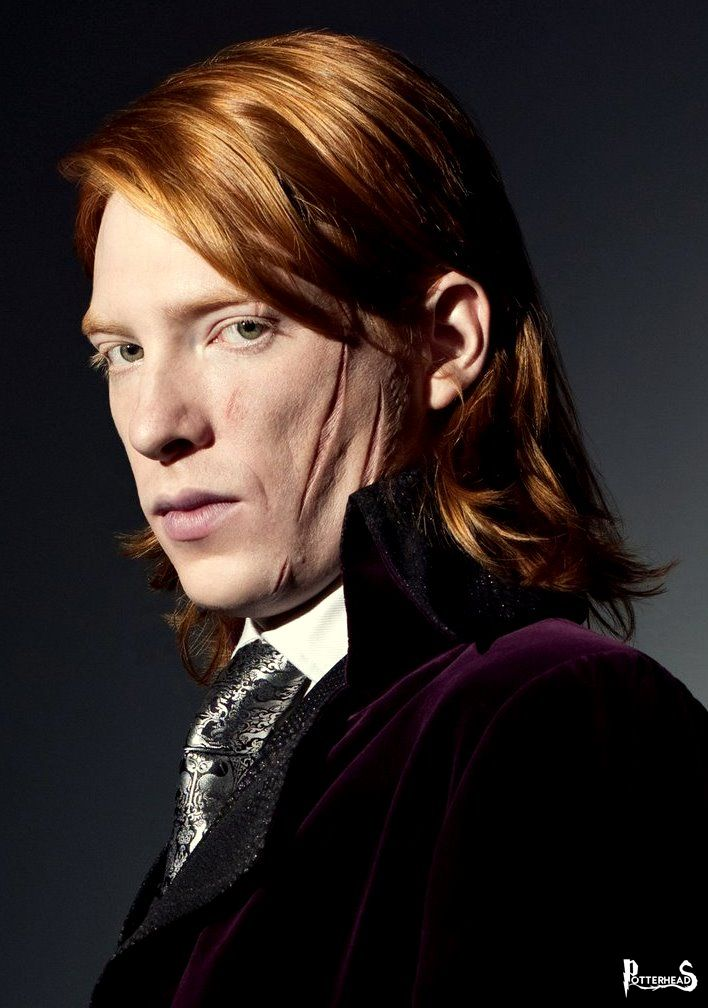 Bill Weasley Harry Potter - PotterPedia.it