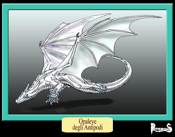Drago Harry Potter - PotterPedia.it