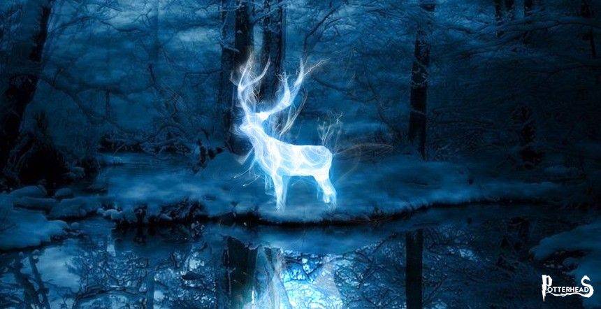 Incanto Patronus Harry Potter - PotterPedia.it