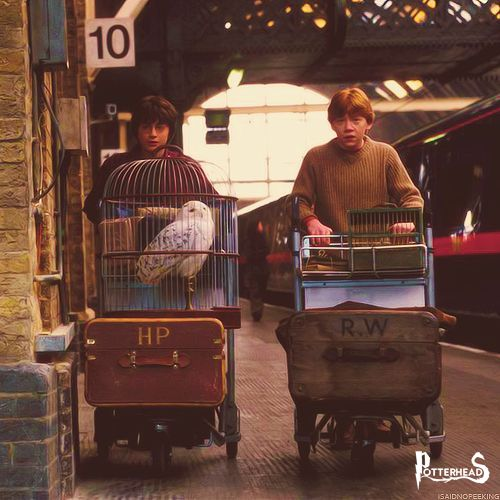 Binario 9 e ¾ Harry Potter - PotterPedia.it