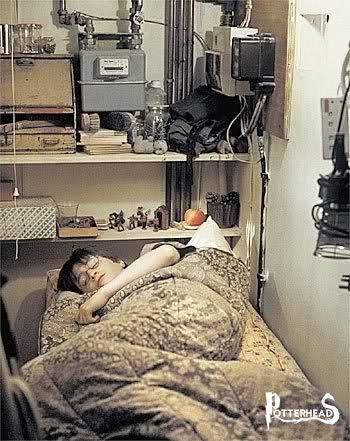 Casa Dursley Harry Potter - PotterPedia.it