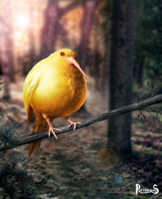 Golden Snidget Harry Potter - PotterPedia.it