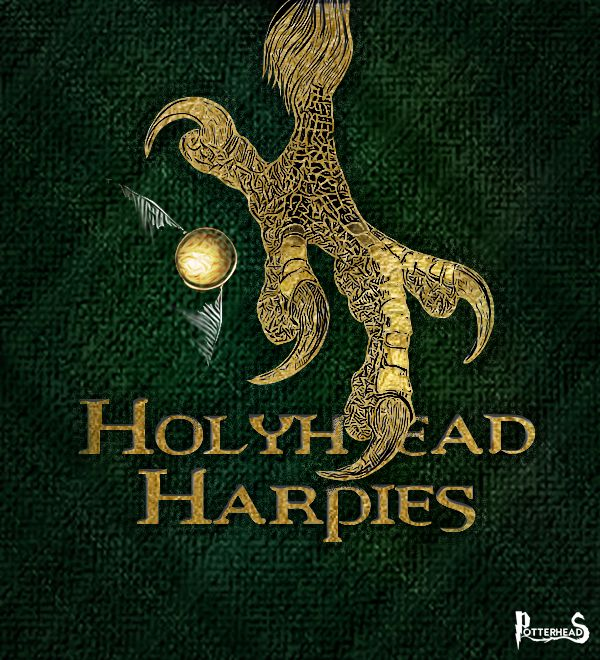 Holyhead Harpies Harry Potter - PotterPedia.it