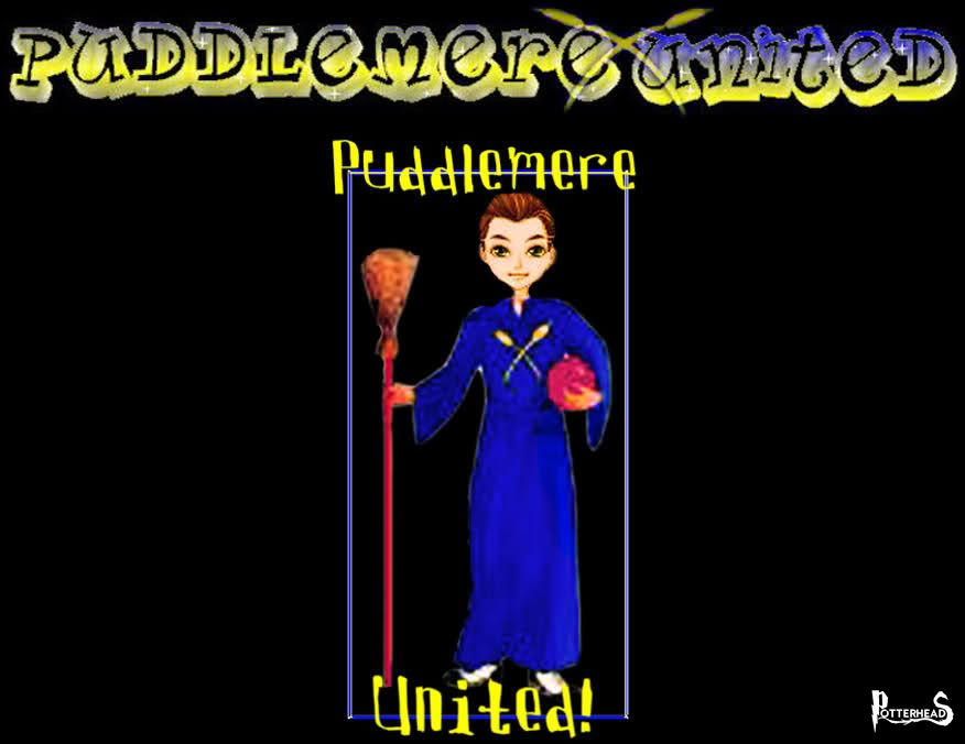 Puddlemere United Harry Potter - PotterPedia.it