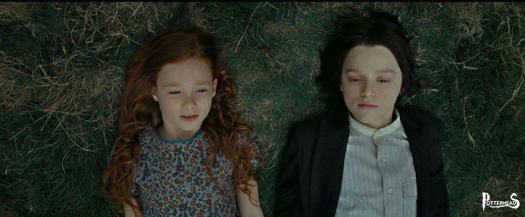 Il linguaggio dei Fiori in Harry Potter Harry Potter - PotterPedia.it