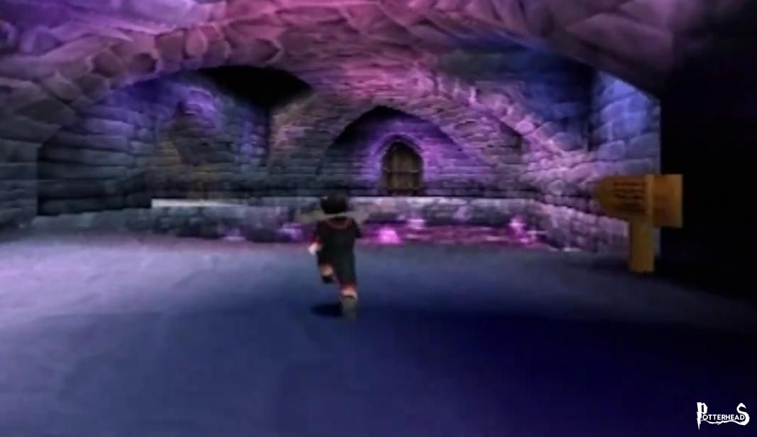 Dungeon Pit Harry Potter - PotterPedia.it