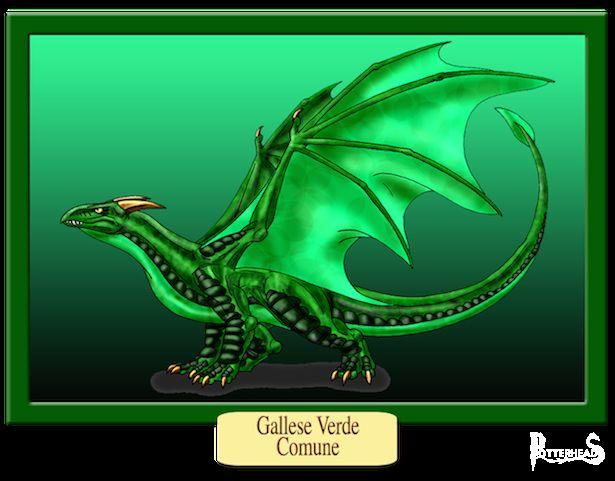 Verde Gallese Comune Harry Potter - PotterPedia.it