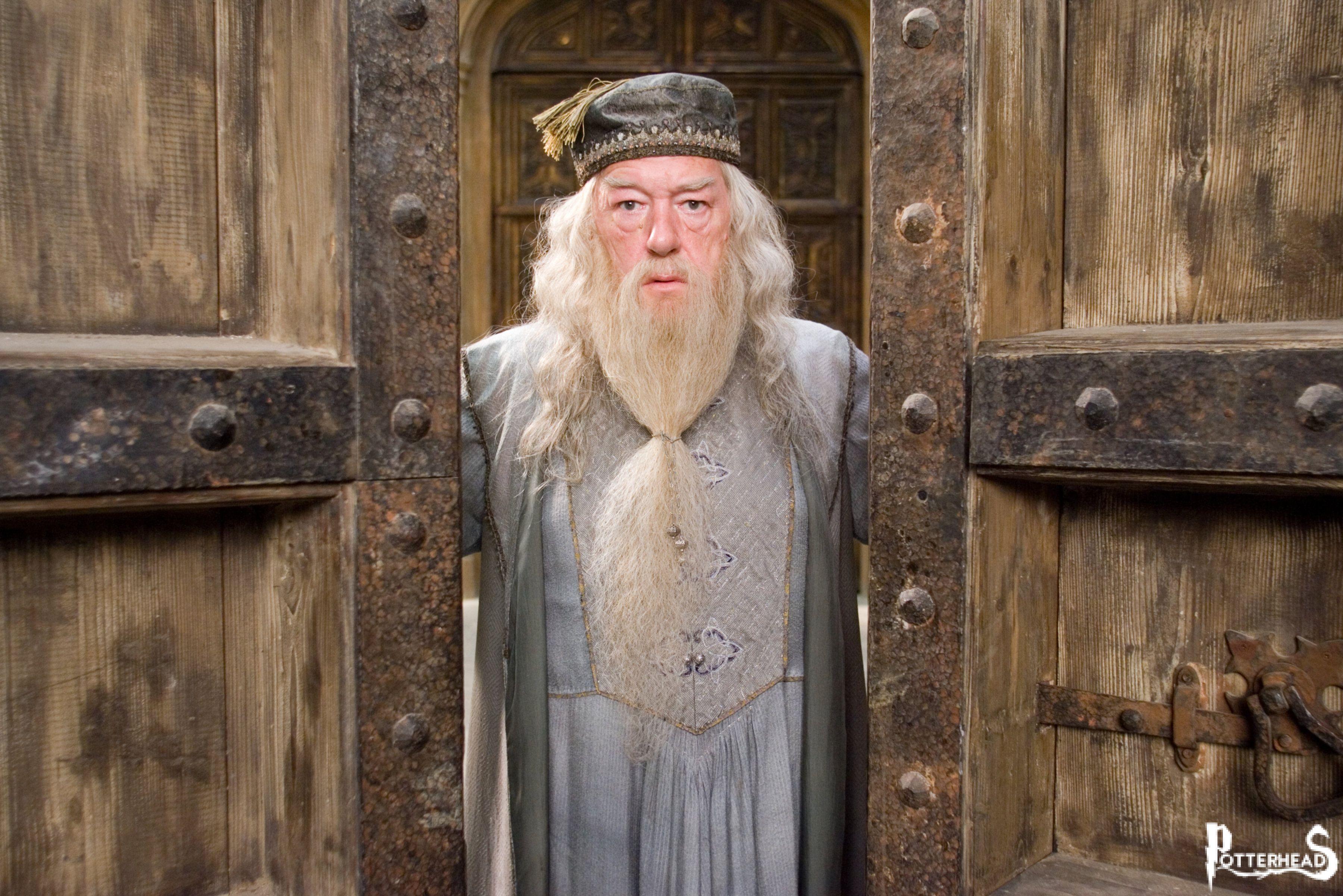 Il capitolo che ci ha fatto innamorare di... ALBUS SILENTE Harry Potter - PotterPedia.it