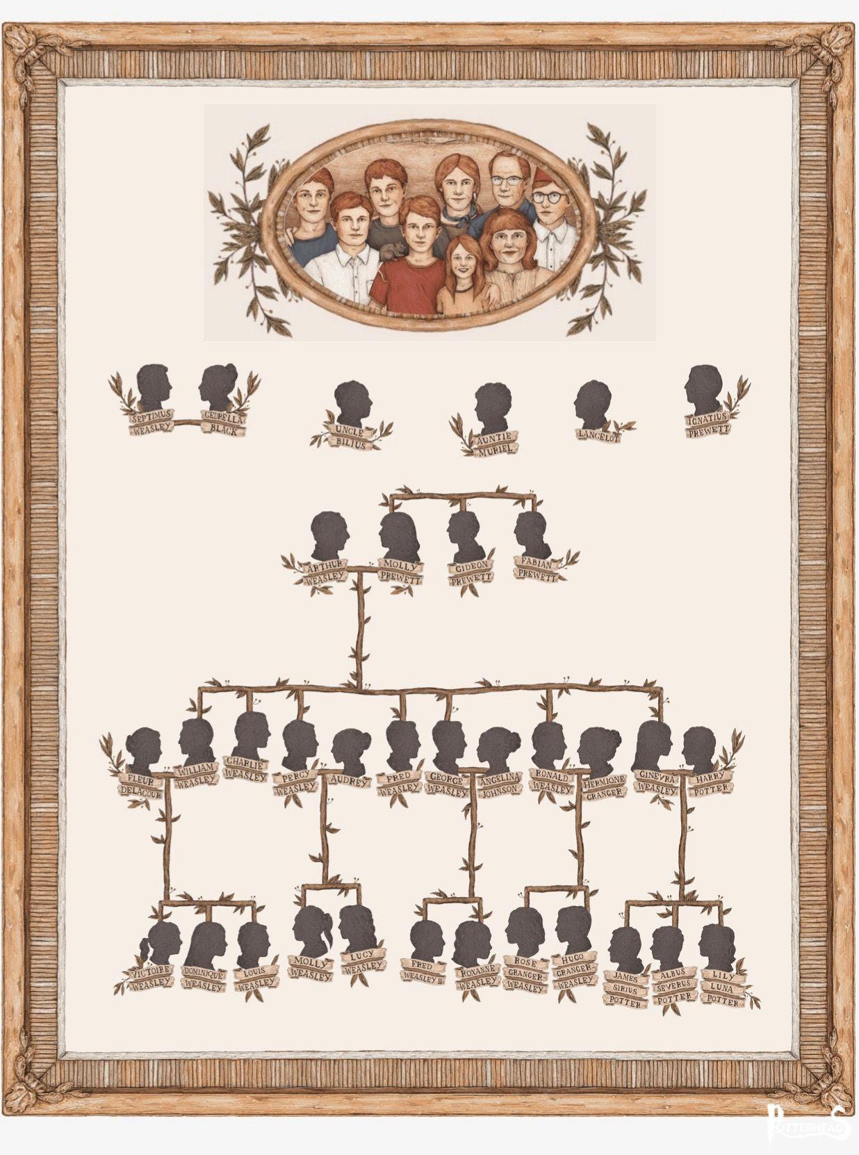 L' Albero Genealogico della famiglia Weasley Harry Potter - PotterPedia.it