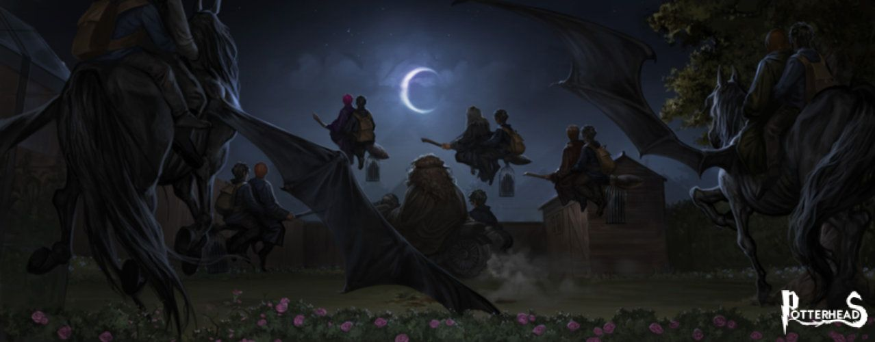 9 volte in cui i Babbani avrebbero dovuto notare la magia, ma non lo hanno fatto Harry Potter - PotterPedia.it