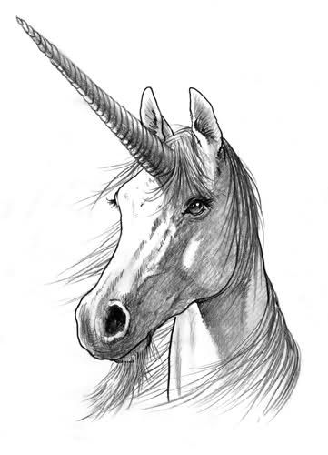 Unicorno Harry Potter - PotterPedia.it